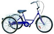 Trike Summit recreational (non-industrial).  Comes with basket, fenders, coaster brake & front hand brake